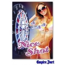 22L241 - Poster '' Nice Shot ''