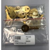 Schlüssel für Schloss L550